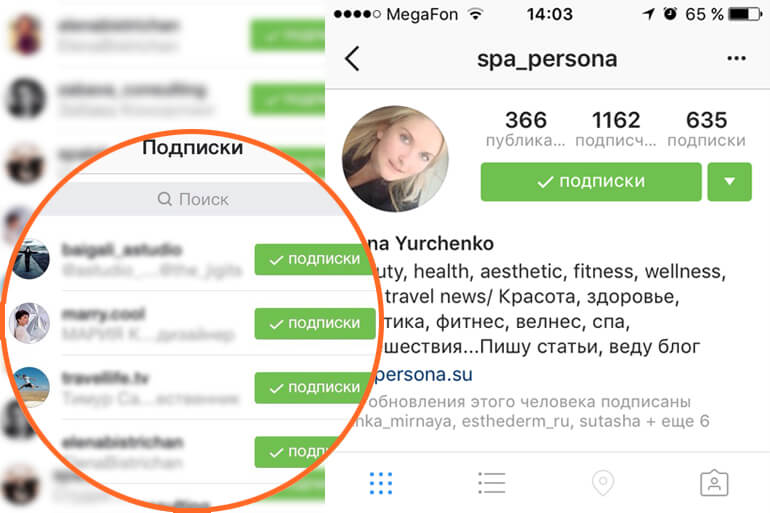 instagram following